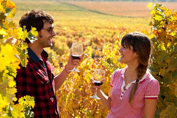 Vinos-Colchagua.jpg