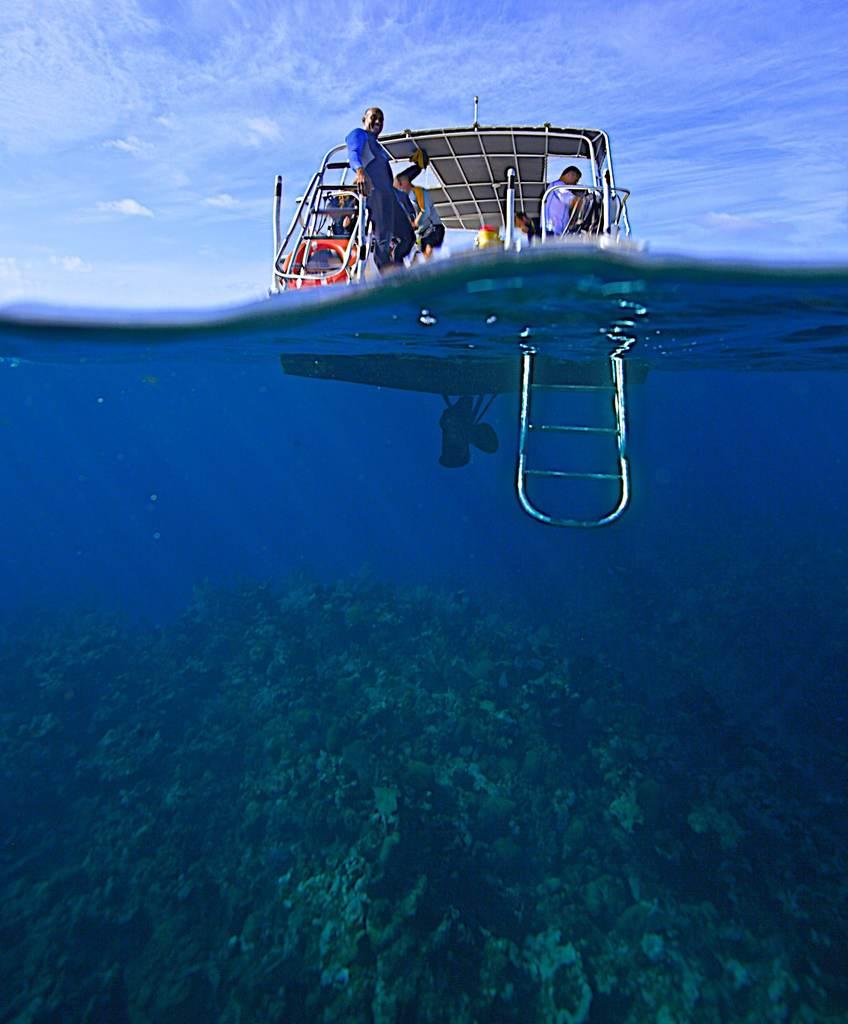 Roatan Diving